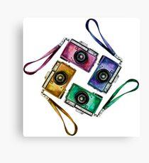 Multicolor vintage reflex cameras Canvas Print