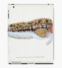 The Natural History of British Fishes Edward Donovan 1802 001 iPad Case/Skin