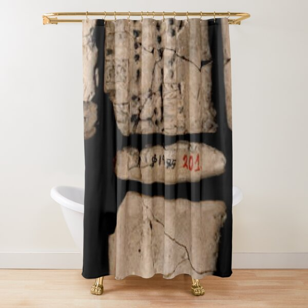 Hard Ancient Memory Shower Curtain