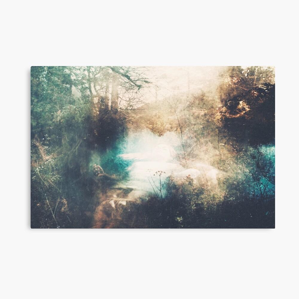 L'Écume des Étoiles Canvas Print