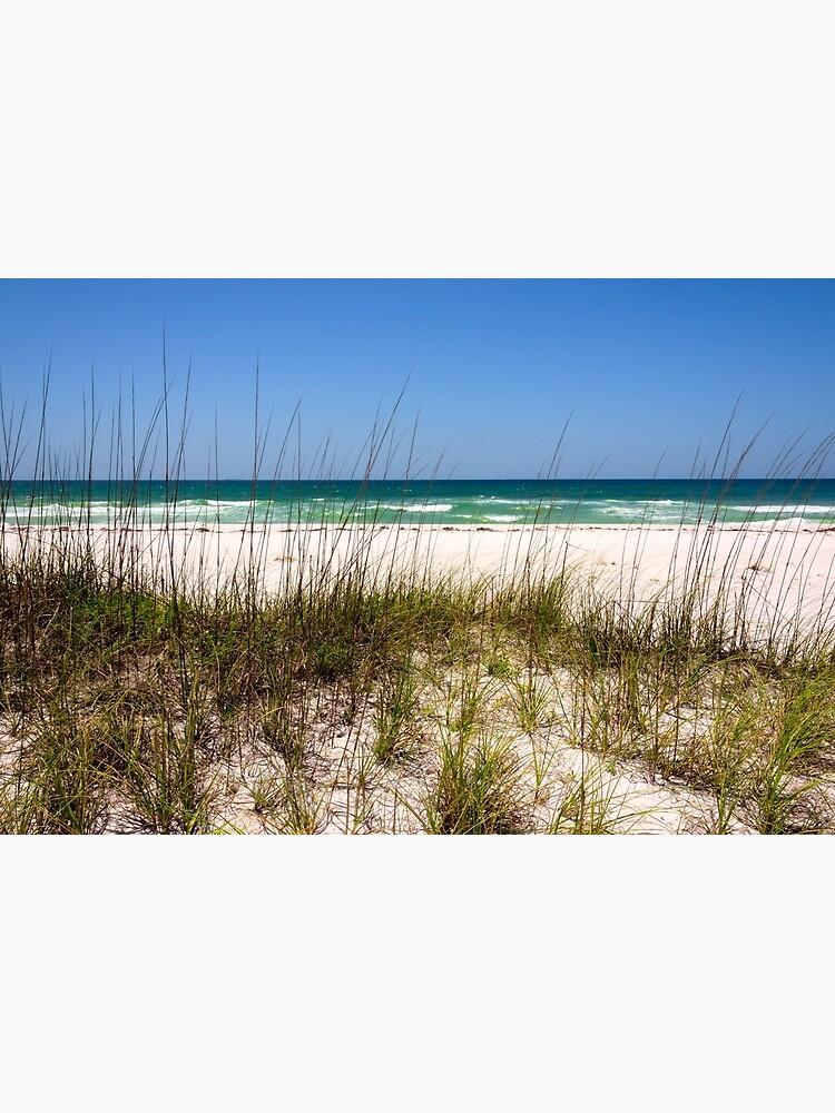 Pensacola Beach 1 - Pensacola Florida de brianharig
