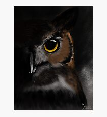 Owl, Darkness Photographic Print