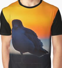 Eye Contact With An Young Seagull At Dawn | Sayville, New York Graphic T-Shirt