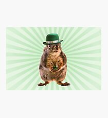 St Patricks Day Squirrel Photographic Print