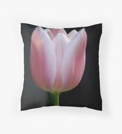 Tulip and spring 2013 Throw Pillow