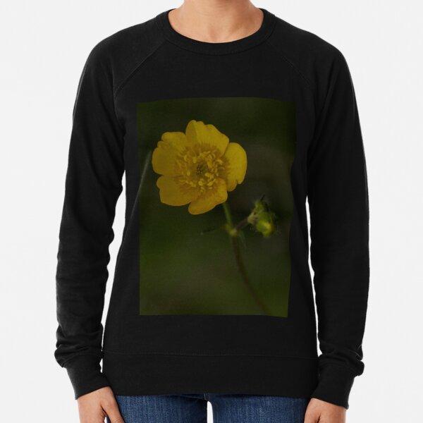 Meadow Buttercup - Burntollet Woods, County Derry Lightweight Sweatshirt