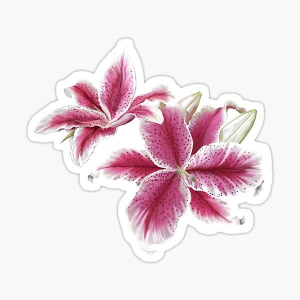 Stargazer Lilly Sticker