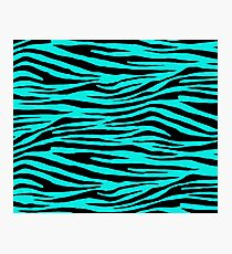0068 Bright Turquoise Tiger Photographic Print