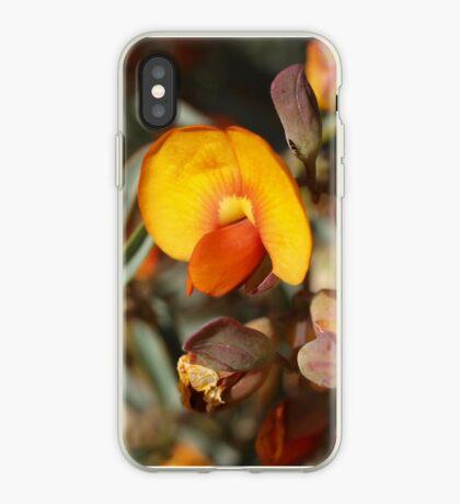 Gastrolobium velutinum iPhone Case