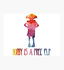 Dobby Is A Free Elf - Colourful Silhouette Photographic Print
