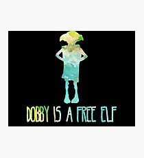 Dobby Is A Free Elf - Colourful Silhouette #2 Photographic Print