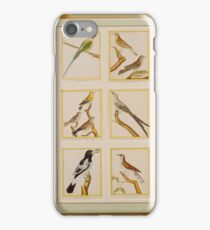 Francois Nicolas Martinet , A collection of 24 prints of exotic birds 3 iPhone Case/Skin