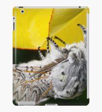 Furry Puss Moth on yellow Tulip iPad Case/Skin
