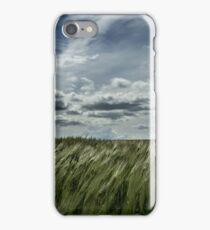Summer crop iPhone Case/Skin