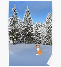 A fox in the snow. Poster