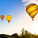 Hot Air Balloons at Sunrise over Martinborough, NZ by SeeOneSoul