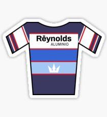 Retro Jerseys Collection - Reynolds Sticker