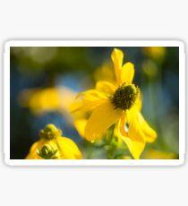 Dreaming Yellow Sticker