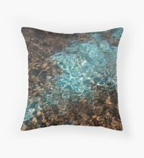 Teal and brown water color photo Throw Pillow