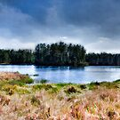 Island.  by Larrikin  Photography