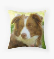 Agility & Intensity Are My Middle Names!! - Border Collie - NZ Throw Pillow