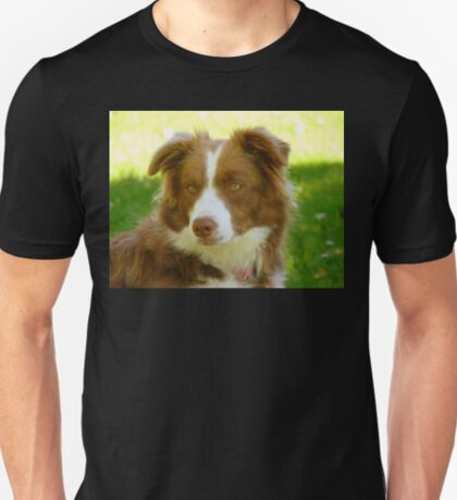 Agility & Intensity Are My Middle Names!! - Border Collie - NZ T-Shirt