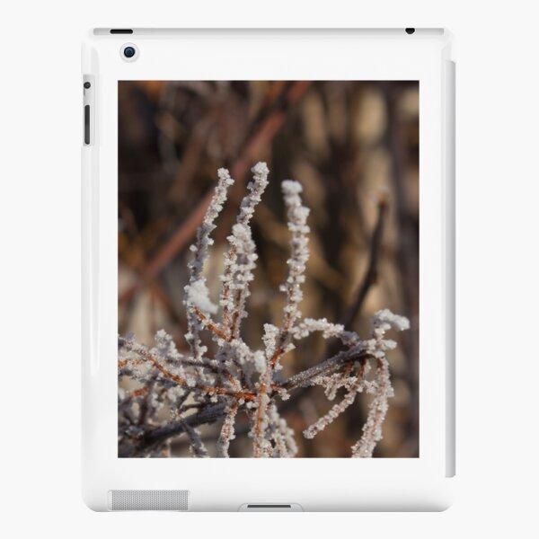 Frosty salute iPad Snap Case