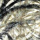Knotty © Vicki Ferrari by Vicki Ferrari