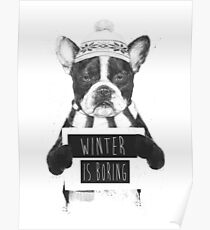 Winter is boring Poster
