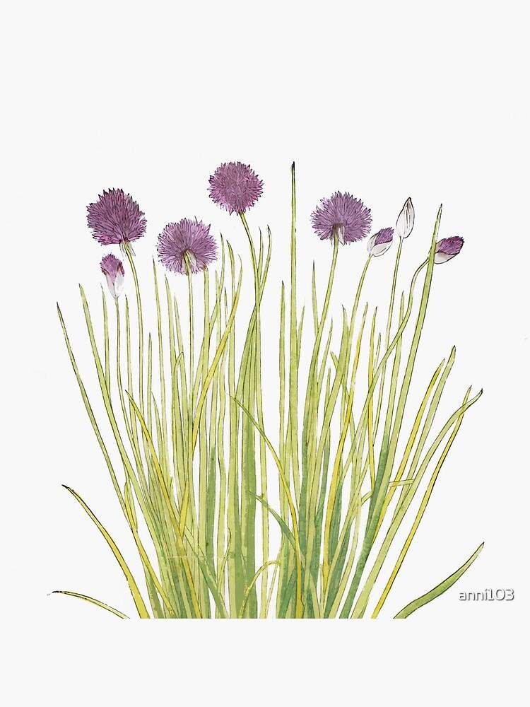 Botanical watercolour  by anni103