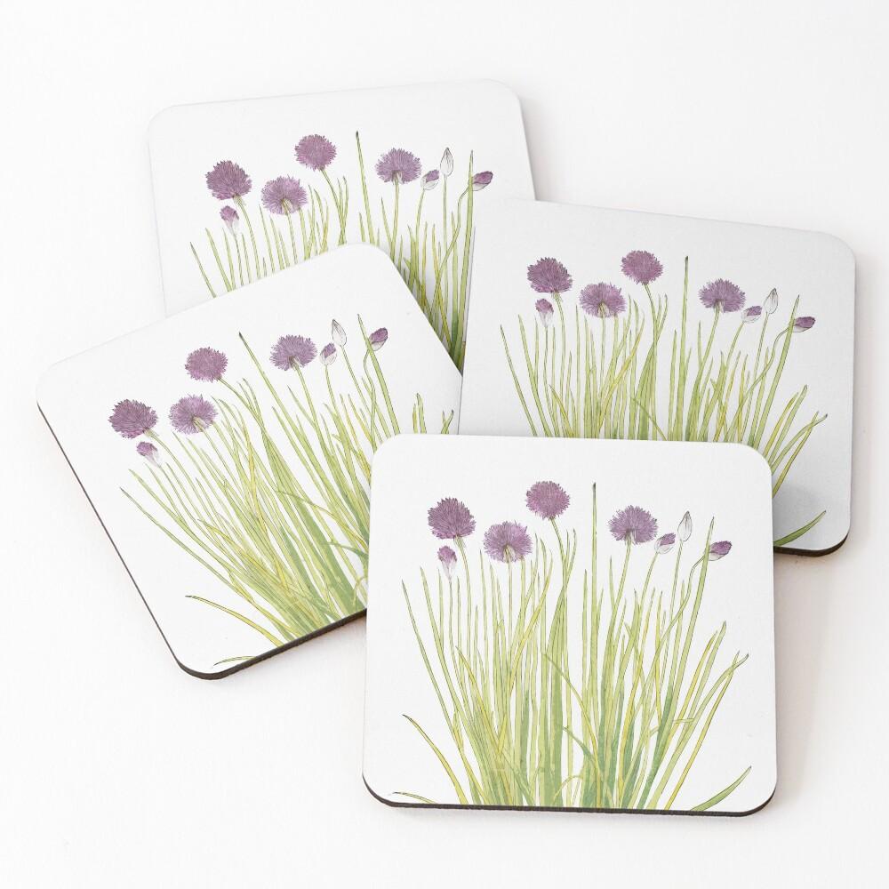 Botanical watercolour  Coasters (Set of 4)