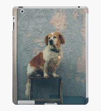 The Shaggy Dog iPad Case/Skin