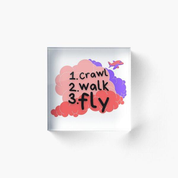 Crawl Walk Fly Pink Acrylic Block