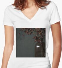 Autumn Bottle and Twigs Women's Fitted V-Neck T-Shirt