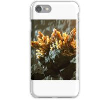 Abstract landscape with floating crystals iPhone Case/Skin