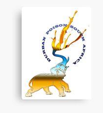 Elephant Durban Poison South africa  Canvas Print