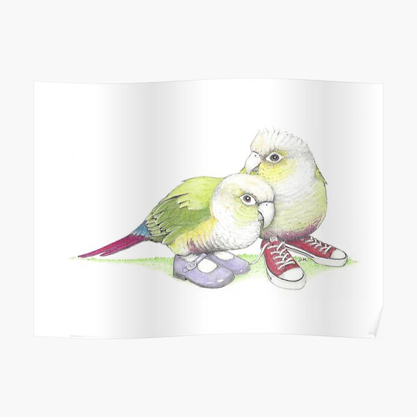 2 conures in low tops and Mary Janes Poster