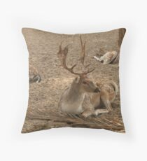 Three Deer Resting Throw Pillow