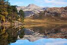 Blea Tarn Reflections by Stephen Miller