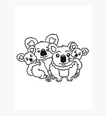 sweet little baby koala cute mamapapa 2 children couple sitting family Photographic Print