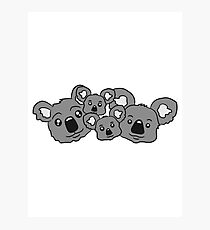 sweet little baby koala cute mamapapa 2 children couple faces heads family Photographic Print