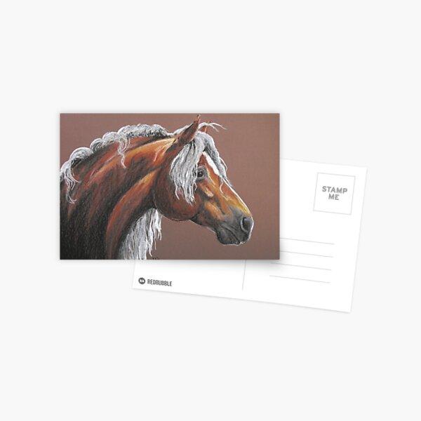 Haflinger Postcard
