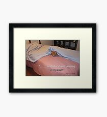 My best friend and companion, Remi.  Framed Print