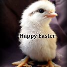 Happy Easter Chick - NZ by AndreaEL