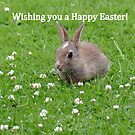 Easter Bunny Wishes - NZ by AndreaEL