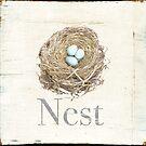 Nest by Terri  Ellis