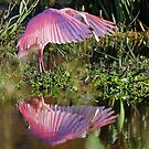 Spoonie Reflections! by jozi1