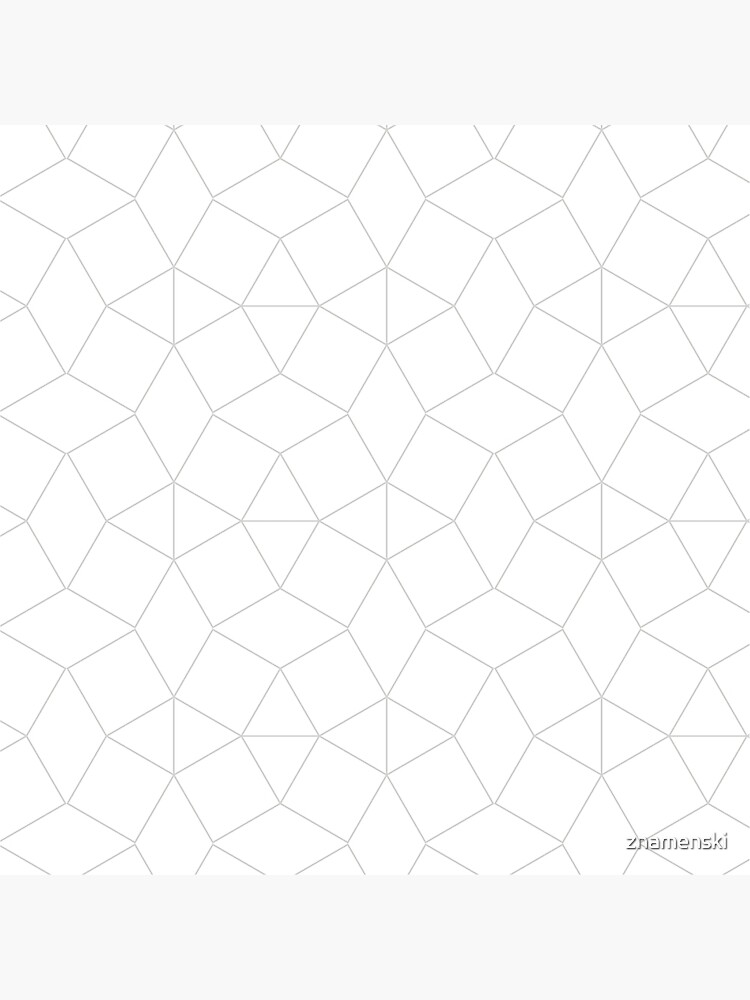 Dashleigh Geometric Label Design Template, Mesh, Web, Net by znamenski