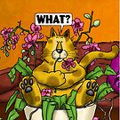 WHAT CAT in orchid by Martine Carlsen