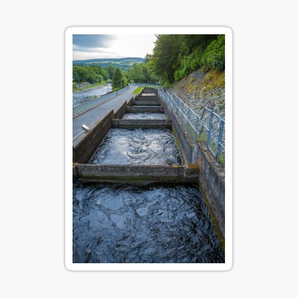 Pools or chambers with flowing water in the salmon ladder at Pitlochry dam Sticker